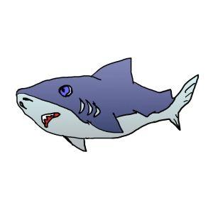 船で夜釣りに行ったら、サメが何度も何度も船に体当たりしてきた・・・