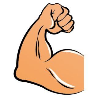 【研究】筋肉があるほど死亡率が下がる