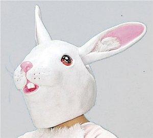 嫁が犬とウサギの世話に夢中で家事をしてくれない・・・