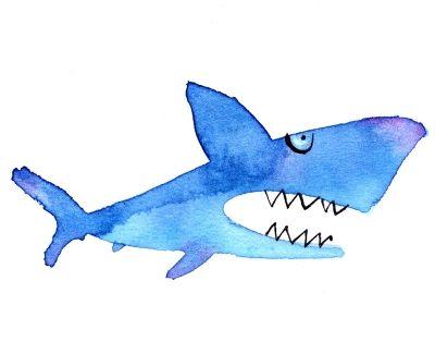海水浴してたら、サメに喰われかけた事がある。