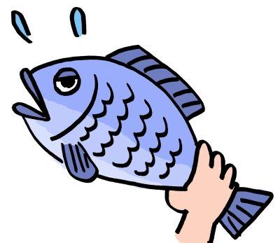 マズメシ嫁が明日魚捌くって言った。どんなモノが出てくるのか想像つかん