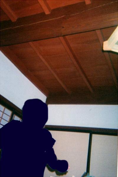 大蛇の這っていった天井