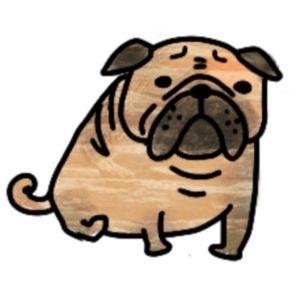 犬相手に笑う練習をしてる。