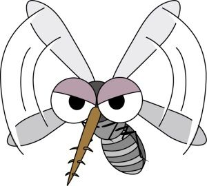蚊を退治するために骨折した俺の嫁・・・