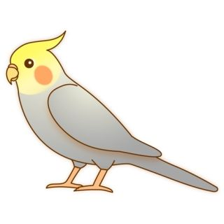 (・e・)鳥と暮らす奥様(・e・)27(イラスト)