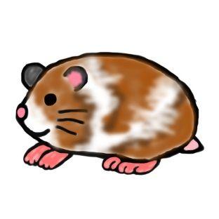 知り合い猟師がヌートリア(巨大ネズミ)って結構旨いって話してたので…