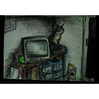 家のテレビをつけると、死んだはずの同じアパートのおばあさんが写った。