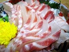 3nizadai-sashimi2