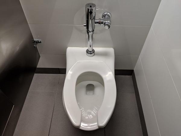 American-weird-toilets