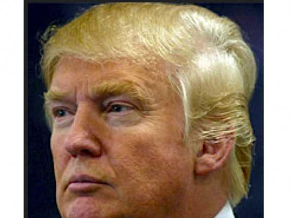 donald,trump,hair