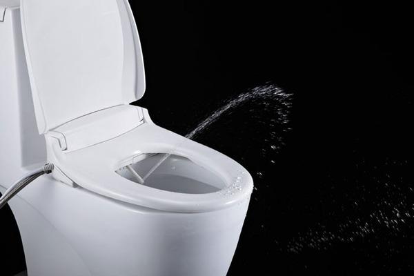 toto-toilet-seat-bidet