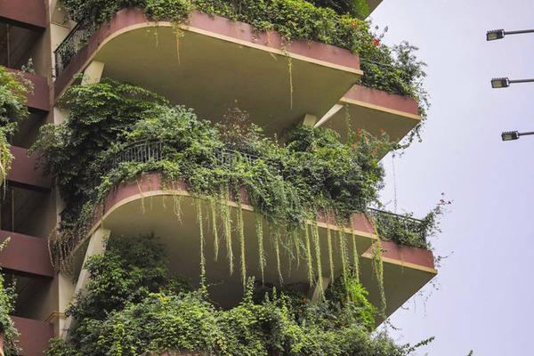 Chengdu-vertical-forest4