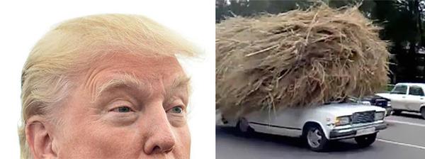 donald-trump-funny-look-alike-13__700