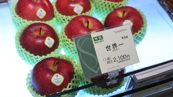Japan's Perfect Fruit 8