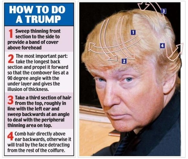 Donald_Trump_Hairstyle_Instructions