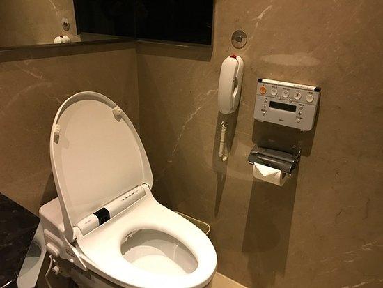 japanese-style-toto-toilet