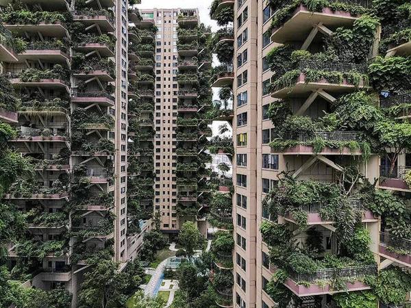 Chengdu-vertical-forest2