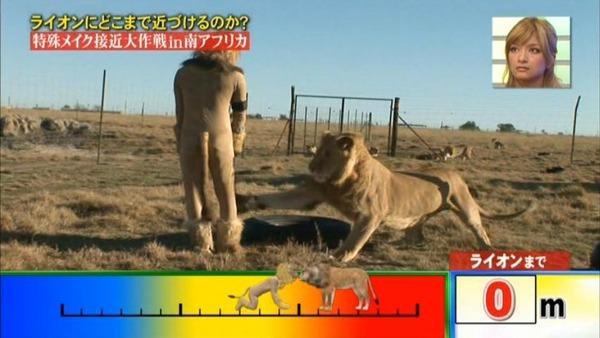 外国人「日本のお笑い芸人が凄すぎる(笑) いつか死ぬぞ!」 海外の反応。