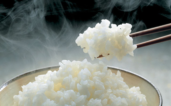 Quality_Japanese_Rice_MOQ_10kg