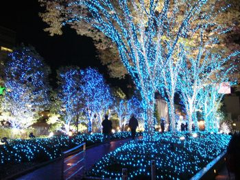 2008-christmas-shinjuku-picture6