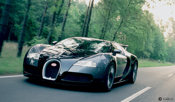 Veyron_Photo
