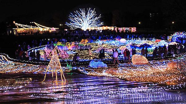 christmas_lights_tokyo_704