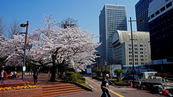 東京駅周辺の街並み
