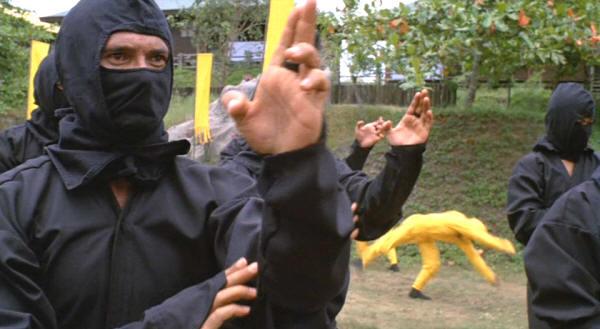Ninja_Training